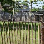 omheining kippen schapenhek 100 cm hoog met latafstand 6 cm