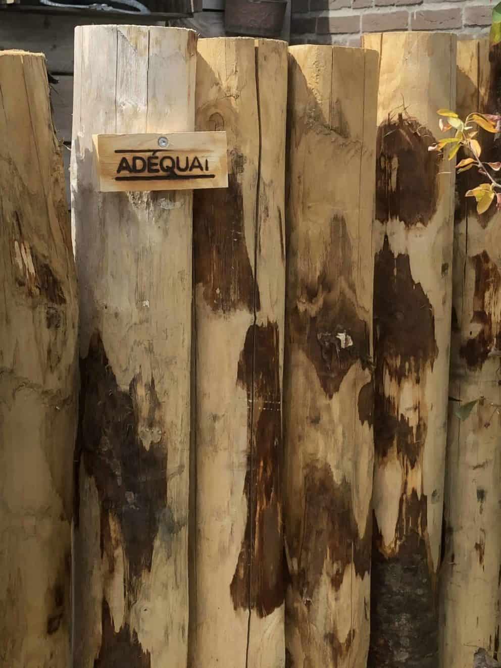 kastanjehouten palen 10-12 cm